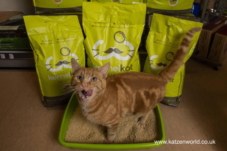 Kernel Kat Cat Litter