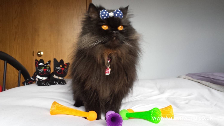 Bright Bopper Cat Toys